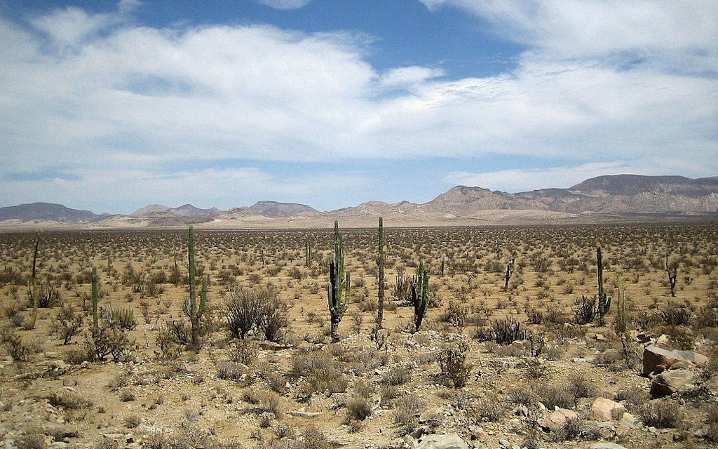 Baja California, panorama