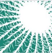Mondocactus logo