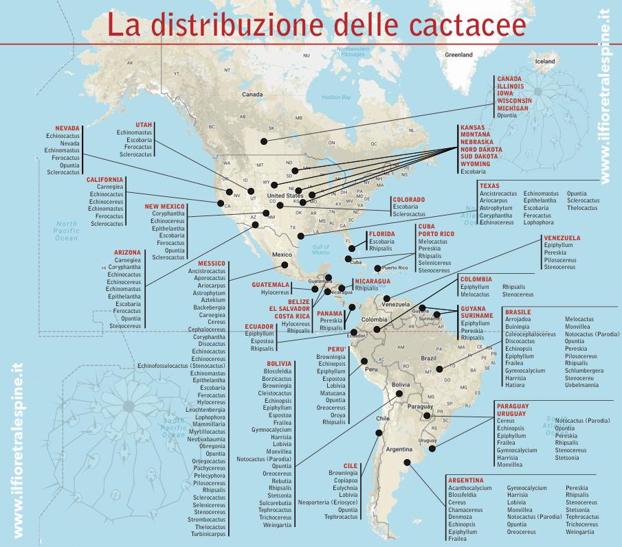 mappa jpg