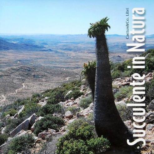 Succulente in natura copertina