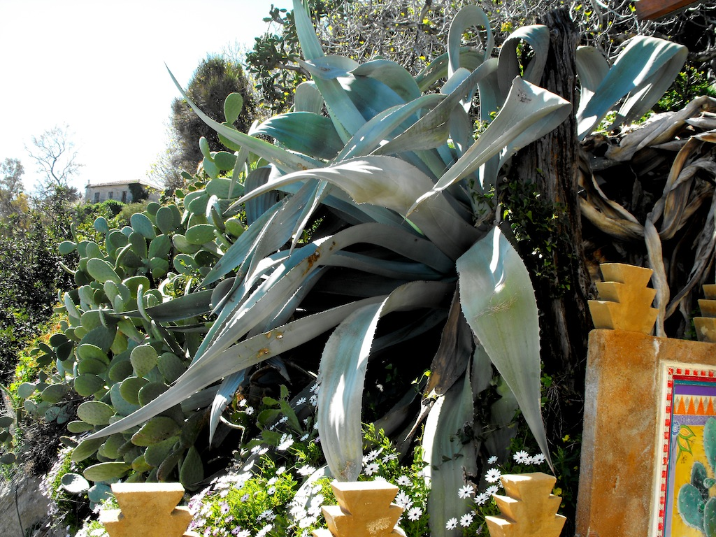 Pallanca giardino esotico