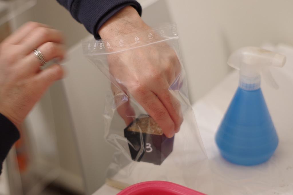 Posizionamento del vaso nel sacchetto