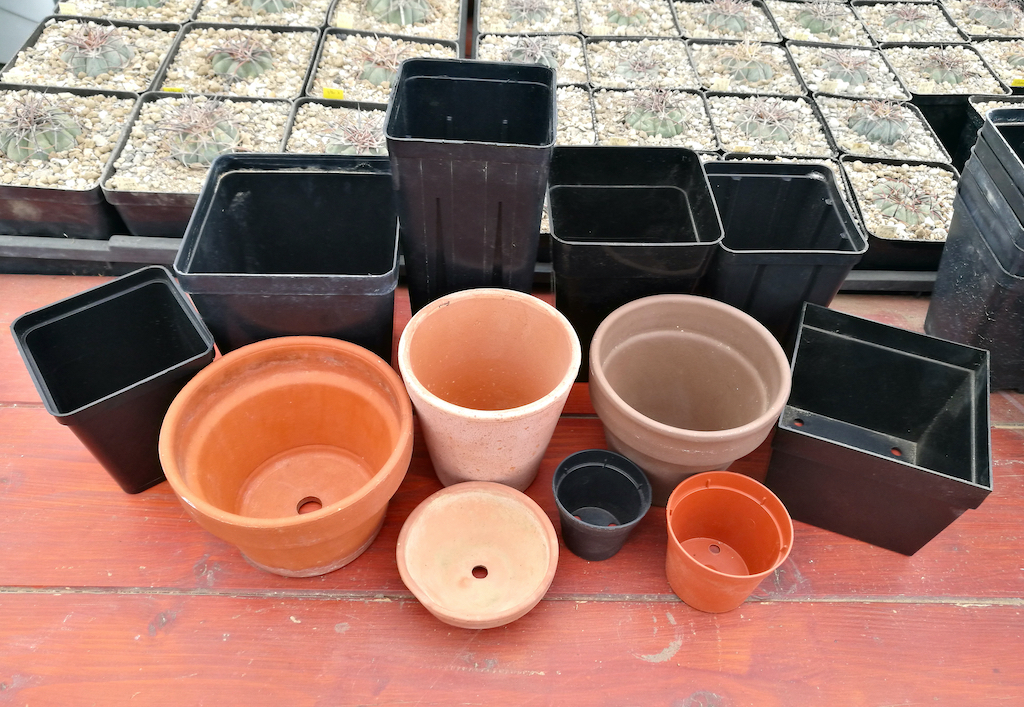 Vasi di varie dimensioni e materiali